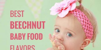 beechnut food flavors